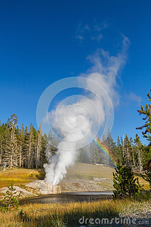 Riverside Geyser at Yellowstone National Park