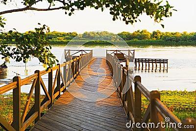 Riverside wood pond