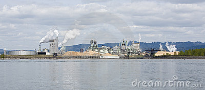 Riverside wood processing plant