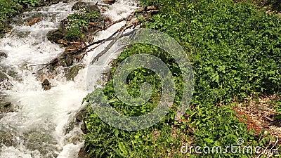 Rivière montagneuse rapide surmontant activement les rapides rocheux Vue supérieure banque de vidéos