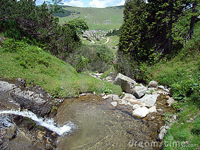 Rivulet in mountain, Bosnia