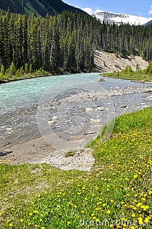 Río bermellón en el parque nacional de Kootenay, Canadá
