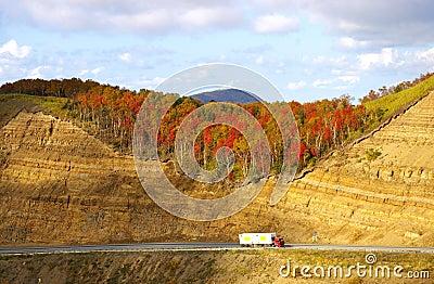 Road in autumn mountain