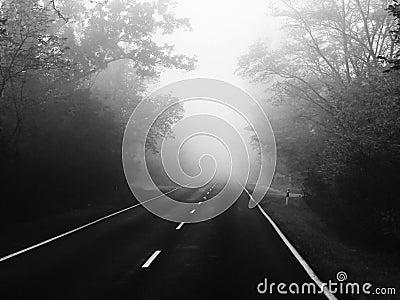 Road Danger - fog
