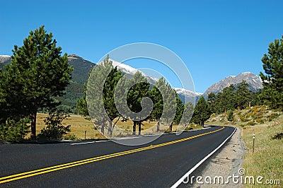 A road in Estes Park