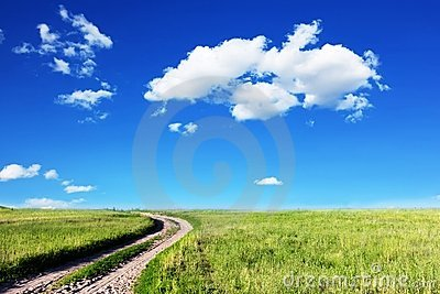 Road in fields