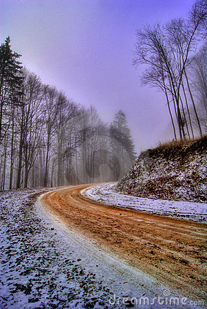 Road through forest in winter