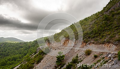 Road in forested mountains