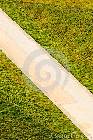 road  in  grasses