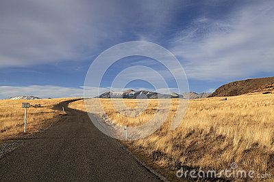 Road through grassland of new zealand