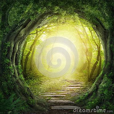 Free Road In Dark Forest Royalty Free Stock Photos - 33128118