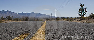 Road Markings & Nevada Landscape
