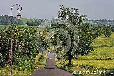 A road in Morvan Park