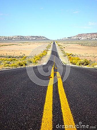 Road portrait