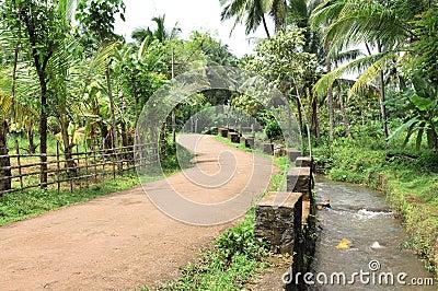 Road and Runnel throug a Farm