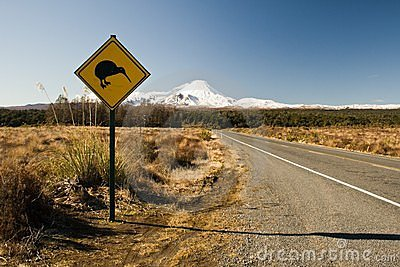Road sign with kiwi