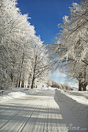 Free Road To A Snow. Royalty Free Stock Photography - 18051707