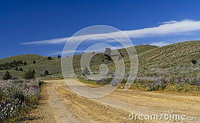 Road to the Flinders Ranges