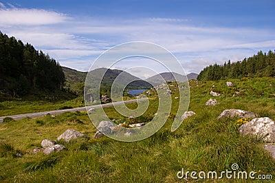 The road to killarney