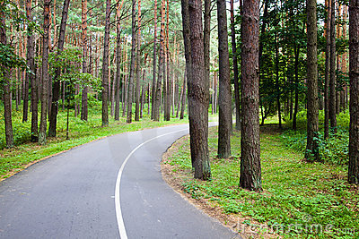 Road to park