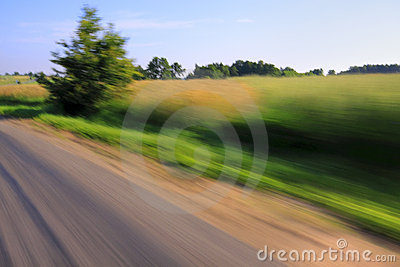 Road and tree with motion blur