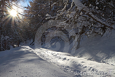 Road under snow
