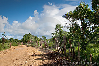 Road in the village under blue sky