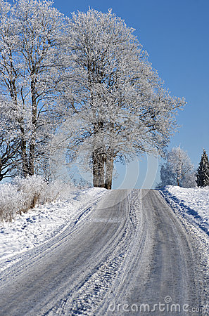 Road in winter landscape