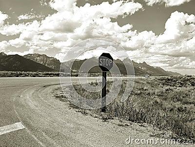 Roadside Tetons