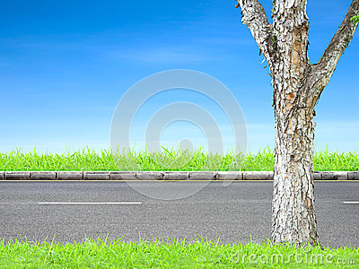 Roadside and tree