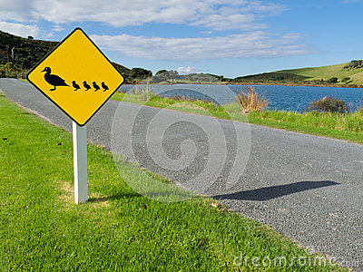 Roadsign warning, ducks with ducklings crossing