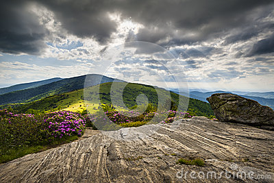 Roan Mountain Appalachian Trail Blue Ridge NC TN