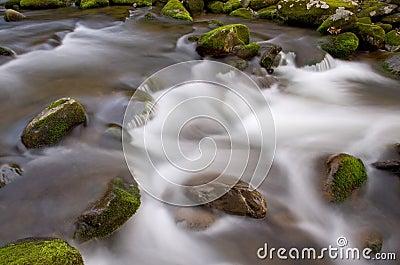 Roaring Fork Rapids
