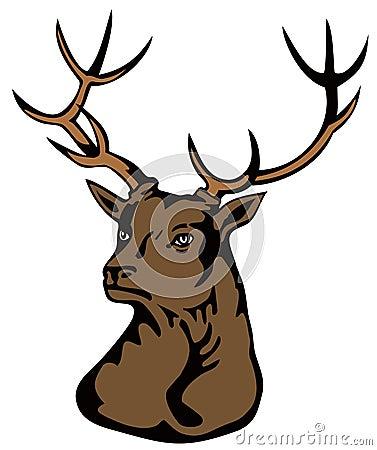 Roaring red deer