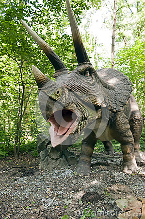 Free Roaring Triceratops Royalty Free Stock Photography - 25520887