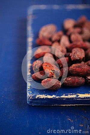 Roasted cocoa chocolate beans on dark blue wood