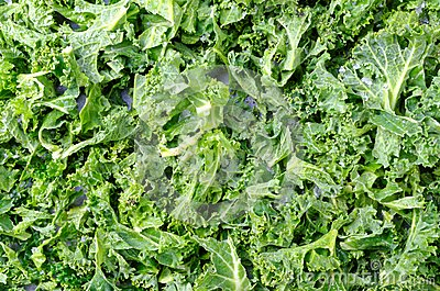 how to cook curly kale in the oven