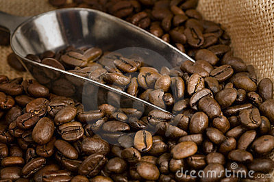 Roasted golden brown coffee beans