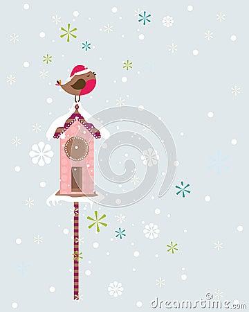 Robin christmas bird