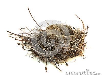 Robin s Nest