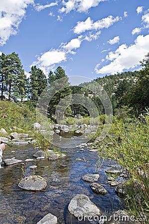 Rocas en un río del enrollamiento
