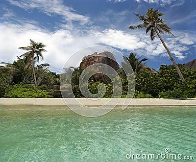 Rocha, palma-árvores na praia tropical do paradice.