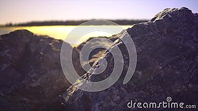 Rochas ao longo da costa video estoque