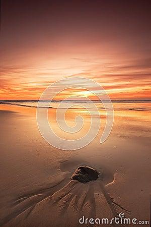 Roche sur la plage au coucher du soleil