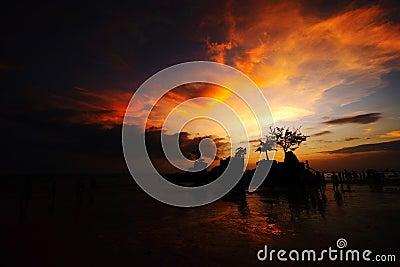 Rock in beach silhouette