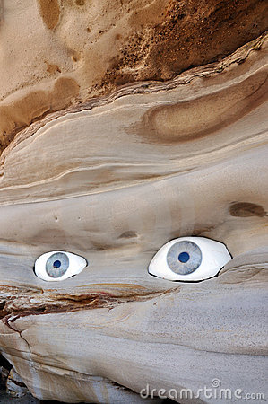 Rock with eyes