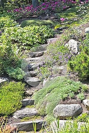Rock Garden Stairs