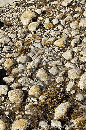 Free Rock Patterns Stock Images - 8145524