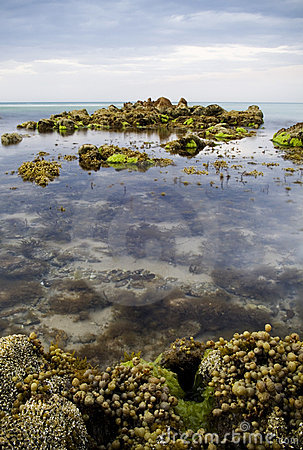 Rock pools with time-lapse water