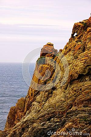 Rock in seashore